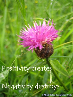 POsitivity Creates